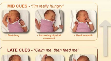 Breastfeeding cues